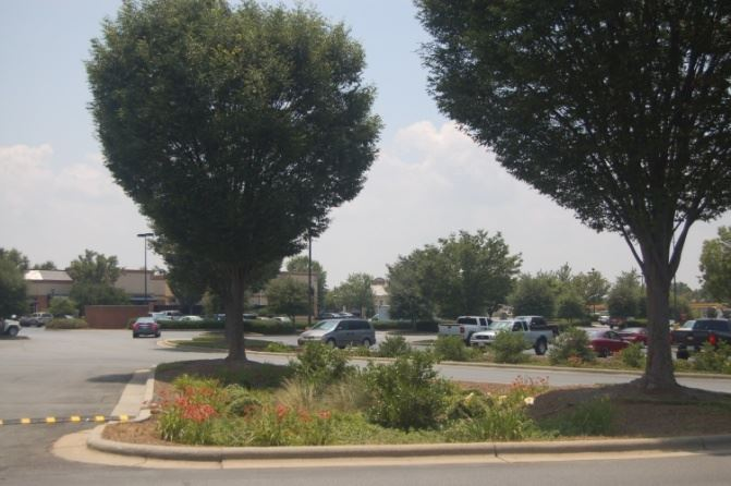 Figure E-2 Retrofit of Rain Garden in Parking Lot at Northcross Shopping Center