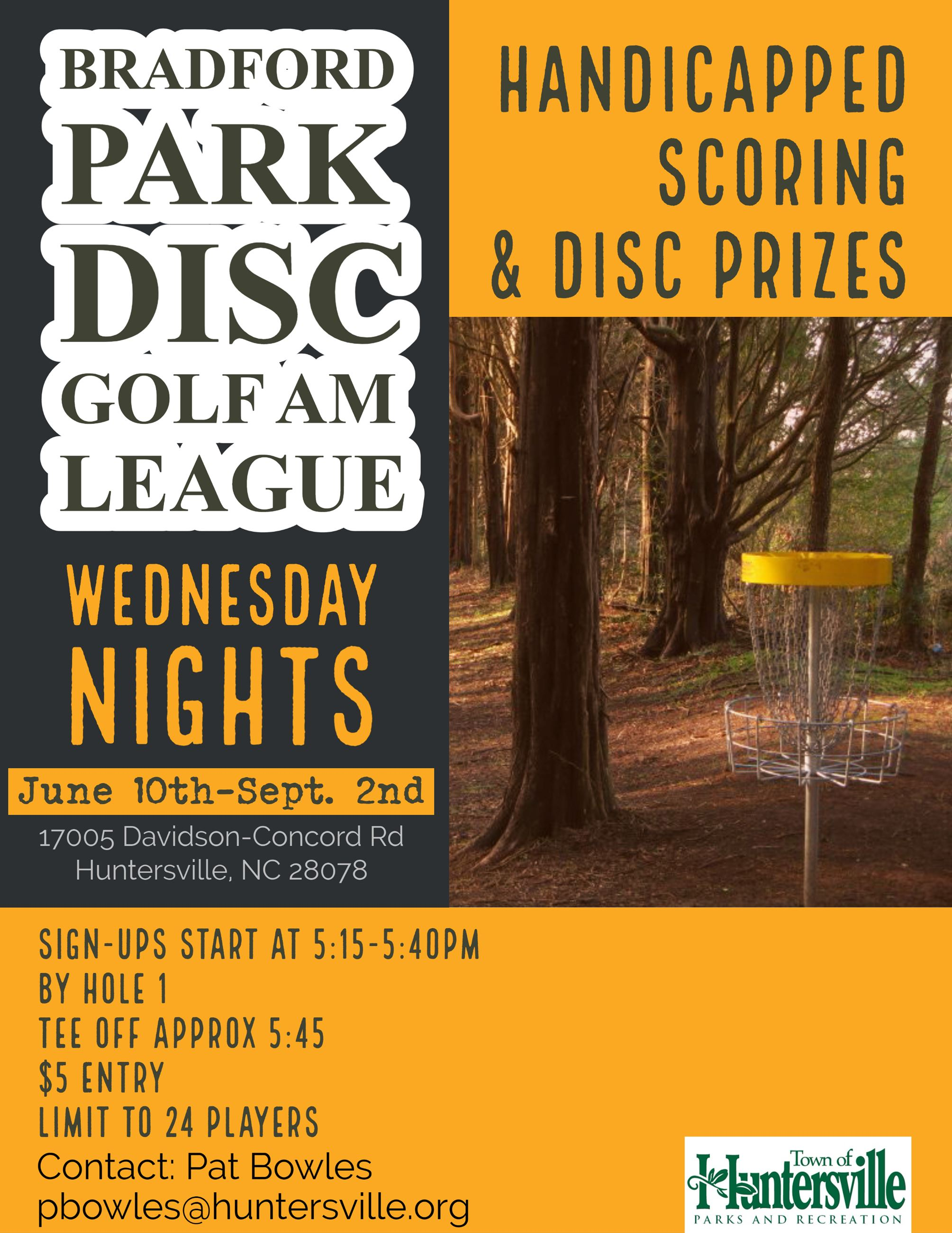 Disc Golf Flyer